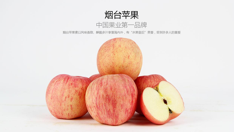 烟台试验苹果免袋技术成功 一人管理百亩果园将成现实
